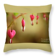 Old-fashioned Bleeding Heart Throw Pillow