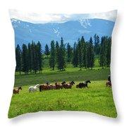 On The Range Throw Pillow