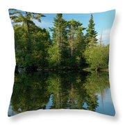 Ontario Nature Scenery Throw Pillow by Oleksiy Maksymenko