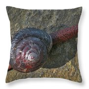 Oregon Snail Throw Pillow