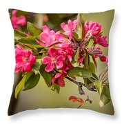 Paradise Apples Flowers Throw Pillow
