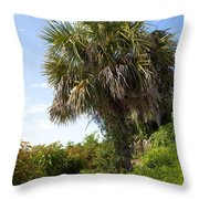 Pelican Island In Florida Throw Pillow