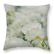 Phalaenopsis Throw Pillow