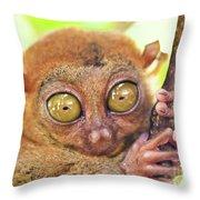 Phillipine Tarsier Throw Pillow