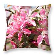 Pink Cherry Tree Throw Pillow