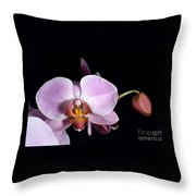 Pink Orchid V Throw Pillow