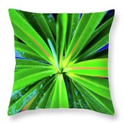 Plants And Flowers In Hawaii 547 C Throw Pillow