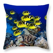 Racoon Butterflyfish Throw Pillow