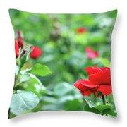 Red Roses Garden Spring Season Throw Pillow
