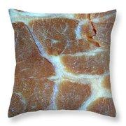 Roast Beef Throw Pillow