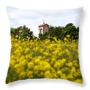 Ruins Of The Church Of St Wenceslas Throw Pillow
