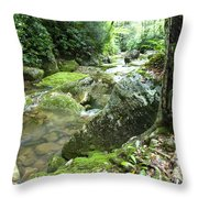 Rushing Mountain Stream Throw Pillow