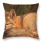 San Joaquin Kit Fox  Throw Pillow