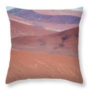 Sand Dune, Sossusvlei, Namib Desert Throw Pillow