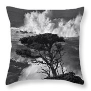 Seascape 11 Throw Pillow