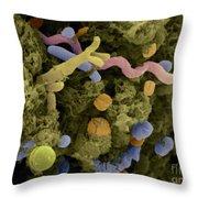 Sem Of Cow Feces Bacteria Throw Pillow