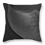 Skatescape Throw Pillow