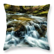 Spring Along Anthony Creek Throw Pillow