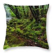 Spring Along Elk River Throw Pillow
