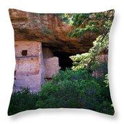 Spruce Tree House - Mesa Verde National Park Throw Pillow
