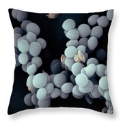 Staphylococcus Saccharolyticus Throw Pillow