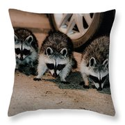 3 Stooges  Throw Pillow
