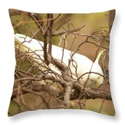 Sulfur Crested Cockatoo Throw Pillow