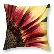 Sunflower Named Ruby Eclipse Throw Pillow