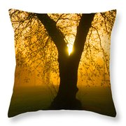 Sunrise Trees Fog Throw Pillow