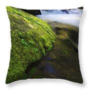 Sweet Creek Oregon 12 Throw Pillow