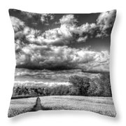 The Summers Day Farm Throw Pillow