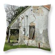 Tin Roof Throw Pillow