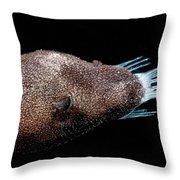 Triplewart Seadevil Throw Pillow