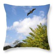 Turkey Creek In Palm Bay Florida Throw Pillow
