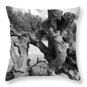 Twisted Driftwood Throw Pillow