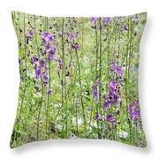 Verbascum Phoeniceum In The Meadow Throw Pillow