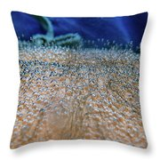Vichy Springs Carbonated Hot Springs Throw Pillow