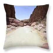 Wadi Zered Western Jordan Throw Pillow