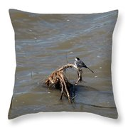 Wagtail Throw Pillow