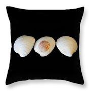 3 White Shells Throw Pillow
