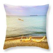 Whitefish Point, Michigan Throw Pillow