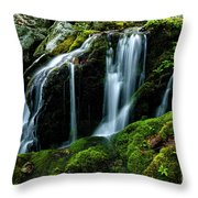 Wigwam Falls Throw Pillow