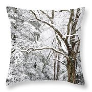 Winter In Monongahela National Forest Throw Pillow