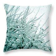 Winter Wonderland In Switzerland Throw Pillow