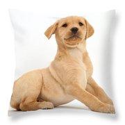 Yellow Labrador Retriever Puppy Throw Pillow