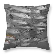 Yellowfin Goatfish Throw Pillow