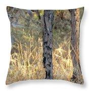 Australian Bush Throw Pillow