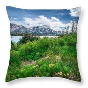 The White Pass And Yukon Route On Train Passing Through Vast Lan Throw Pillow