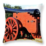Zealand Denmark Throw Pillow