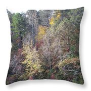 3004-fall 2011 Throw Pillow